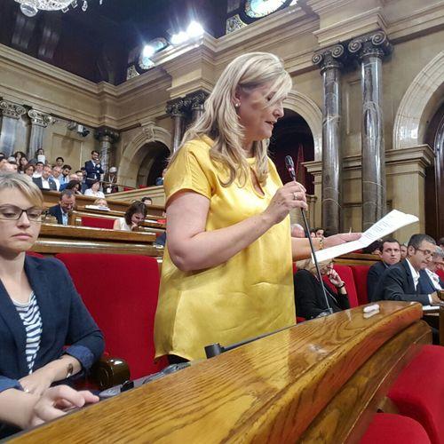 JxSí aconsegueix l'aprovació per unanimitat de la seva iniciativa per reduir el preu dels bitllets del tren AVANT i flexibilitzar-ne les condicions d'ús