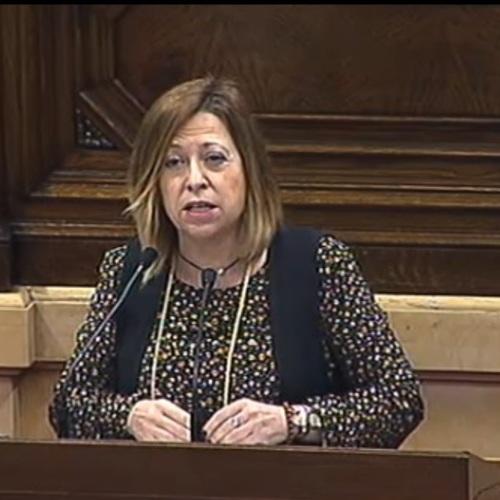"""Montserrat Candini: """"El govern espanyol no ha efectuat les actuacions promeses al litoral de les comarques afectades pel temporal de gener"""""""