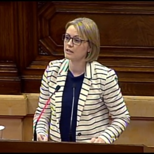"""Maria Senserrich: """"La feina feta ha permès fer una bona llei d'acompanyament amb acords en temes sensibles"""""""