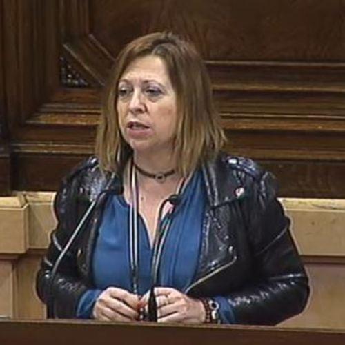 El Parlament exigeix el traspàs complet de competències en matèria d'ordenació i gestió del litoral català a instàncies de Junts pel Sí