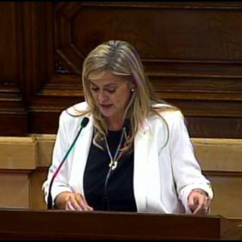 """Cervera: """"La Agencia de Patrimonio Natural y la Biodiversidad de Catalunya debe contribuir a recuperar el tiempo perdido en un ámbito en el que el país puede llegar a ser excelente"""""""